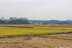 짖궂은 날씨에 시름만 쌓여가는 농심